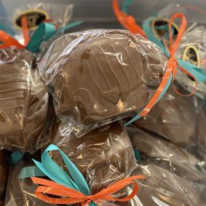 poisson arc-en-ciel chocolat praliné